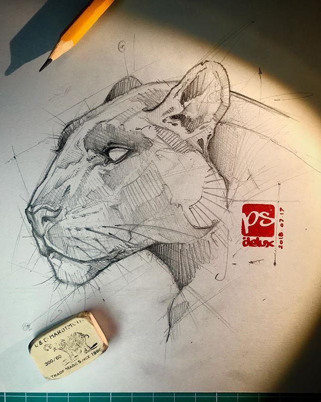big #cat #predator #black #pencil #h