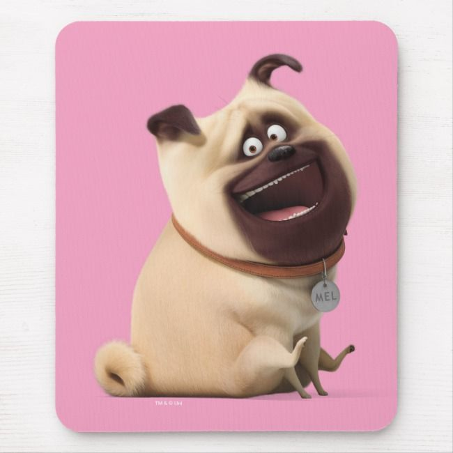 Secret Life Of Pets Mel Mouse Pad Zazzle Com Secret Life Of Pets Wonder Pets Pet Supplies Plus