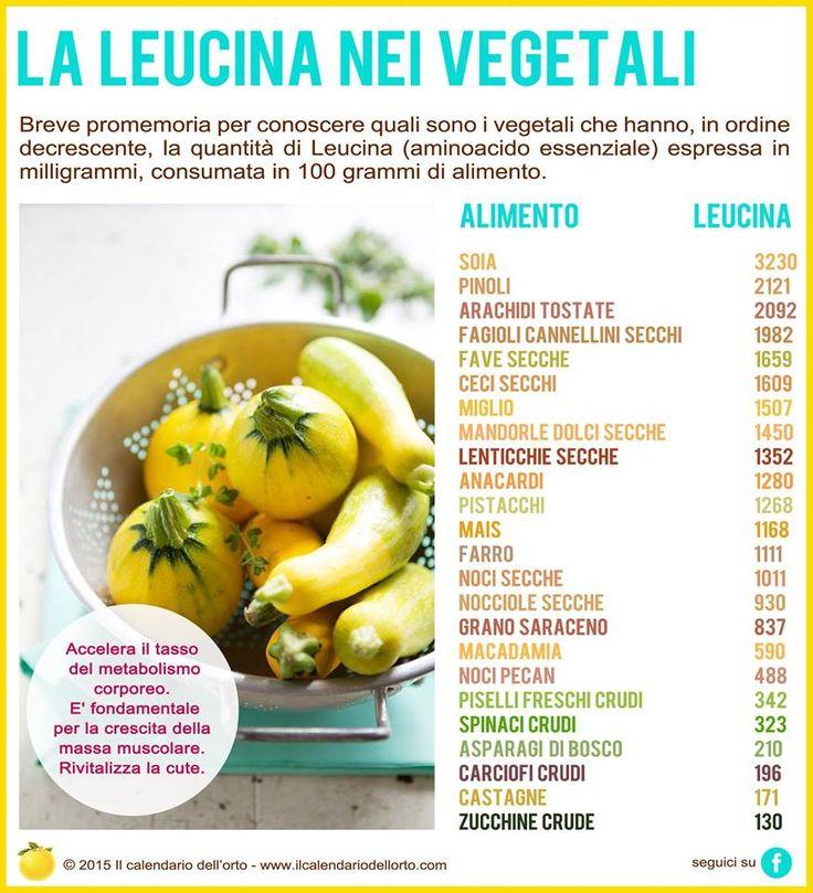 La leucina nei vegetali