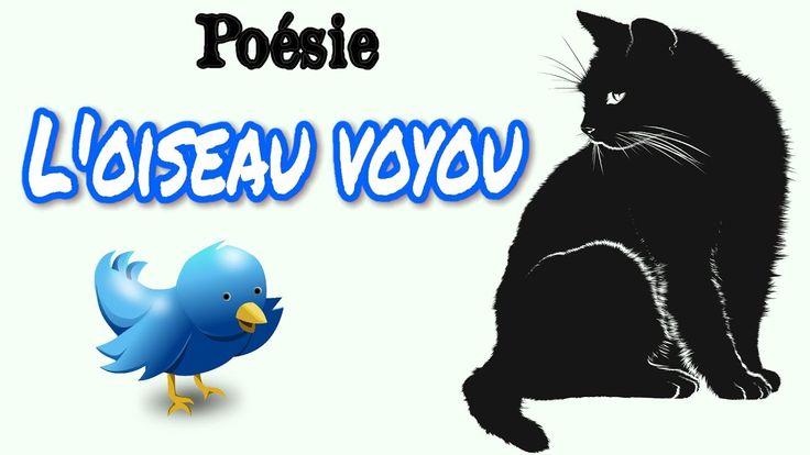 Poésie 🐦🐱 L'oiseau voyou de Claude Roy 🐦🐱