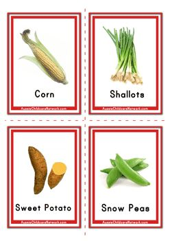 Vegetable Picture Flashcards
