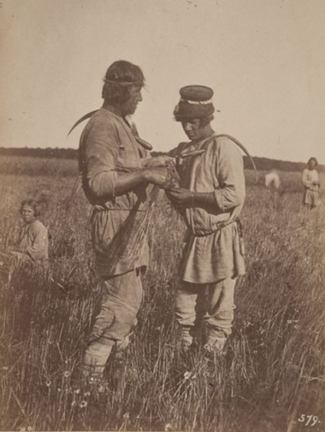 Фотограф Вильям Каррик (1827—1878)Жатва. Симбирская губерния. 1871