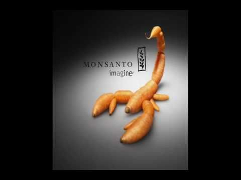 food inc movie monsanto essay Food, inc reveals the shocking truths about the food and food chain that america eats it narrates the industrial production of meat (chicken, beef, and pork.
