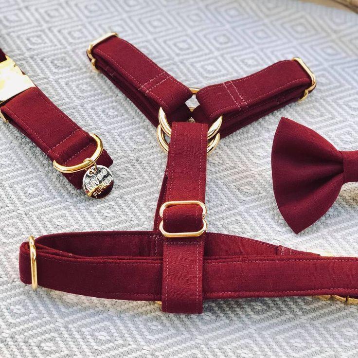 """Merlot"" Dog Strap Harness Dogs, Take that, Stuff to buy"