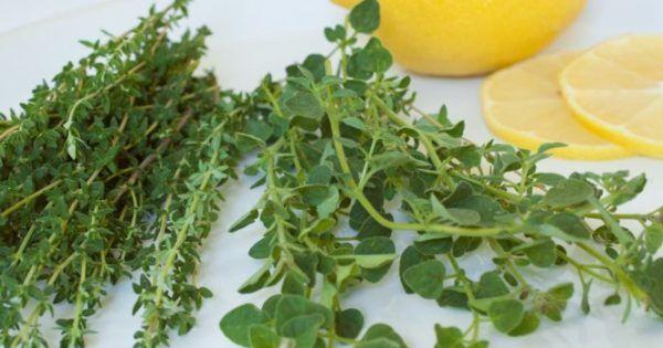 Η ελληνική γη μας το προσφέρει απλόχερα και χάρη στην Μεσογειακή διατροφή υπάρχουν δεκάδες φαγητά και σαλάτες στα οποία μπορείτε να το προσθέσετε για άρωμα