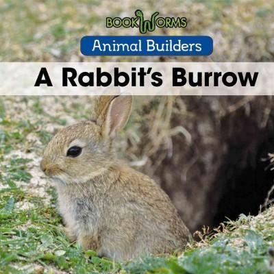 A Rabbit's Burrow
