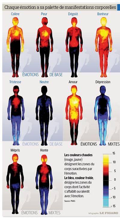 La première carte corporelle des émotions Des chercheurs finlandais ont détaillé les effets physiques du bonheur, de la peur, de la tristesse et d'autres sentiments.