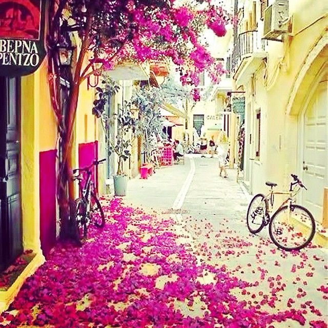 Amazing photo - Beautiful street! Photo credits: @parci1