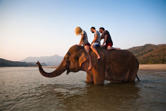 Backpackers with elephants in the Mekong River outside of #LuangPrabang #Laos