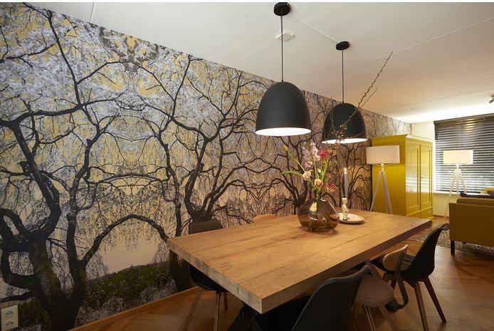 Asian Serenity 4 gezien bij RTL woonmagazine. Design door Studio Eduard van Vliet. Fotobehang verkrijgbaar bij Deco Home Bos in Boxmeer. www.decohomebos.nl