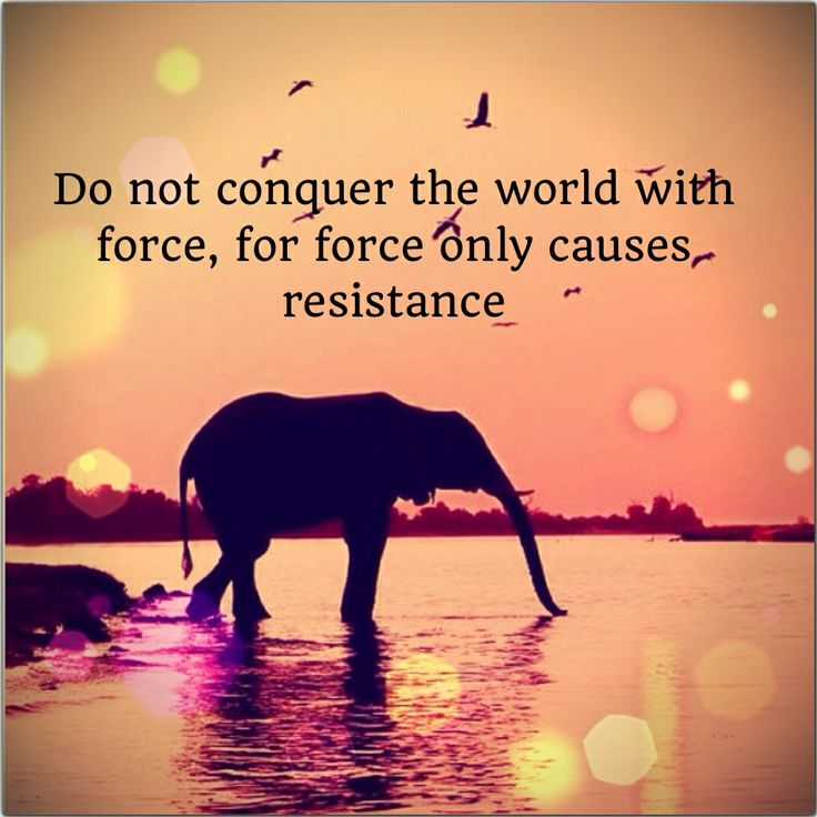 Do not conquer the world with force #FEAST #FEASTlifestyle #quote #benjaminhoff