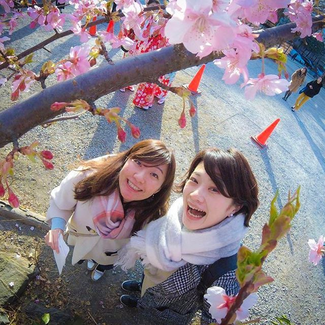 【yoshimu773】さんのInstagramをピンしています。 《今日は100点満点💯とはいかないけど、なかなかに頑張りました、とたまには自分を褒めてあげようと思います🤔💫 気分いいので、ご機嫌な写真をpost🤣 東京で桜を見つけました🌸 早ーいっ * #晴れてよかった #一時はどうなることかと #一歩ずつ前へ * * * #旅行 #trip #友達 #friend #今戸神社 #imadoshrine #パワースポット #お参り #縁結び #桜 #cherryblossom #カメラ女子 #写真撮るのが好きな人と繋がりたい #goprojp #goprogirl #GoPro #ゴープロのある生活》
