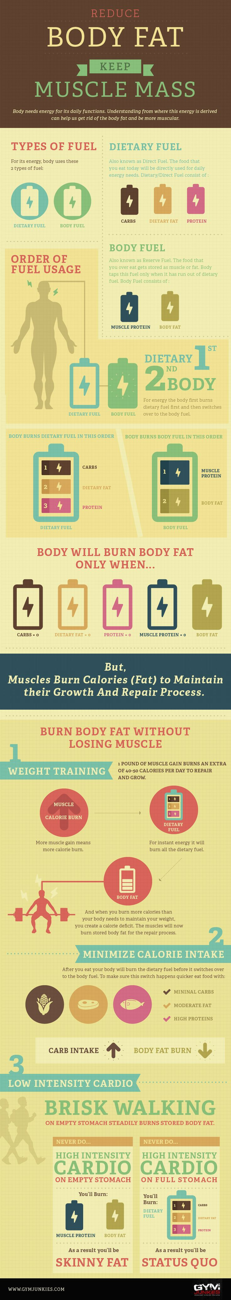 Reduce Your Body Fat Keep Muscle Mass #BodyFat #Diet #Fitness #infographic