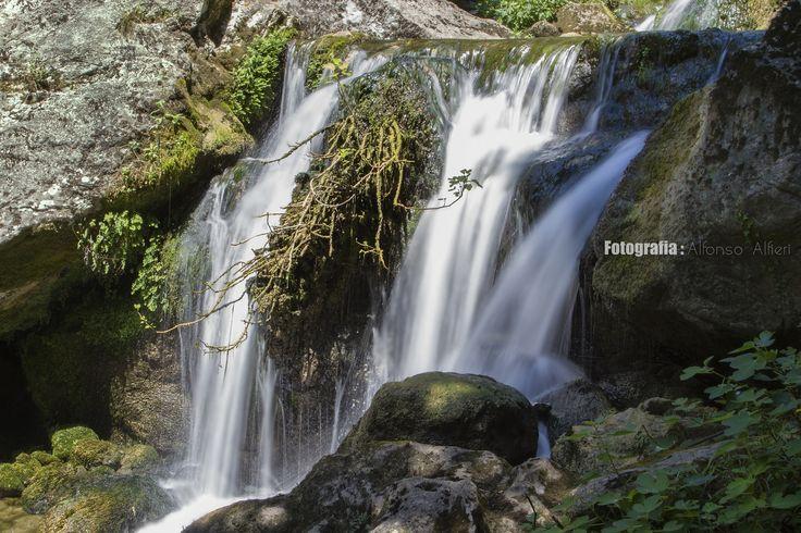Fontegreca - La Cipresseta