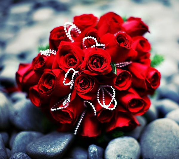Most Beautiful Bouquet Of Flowers | ... most beautiful red ...