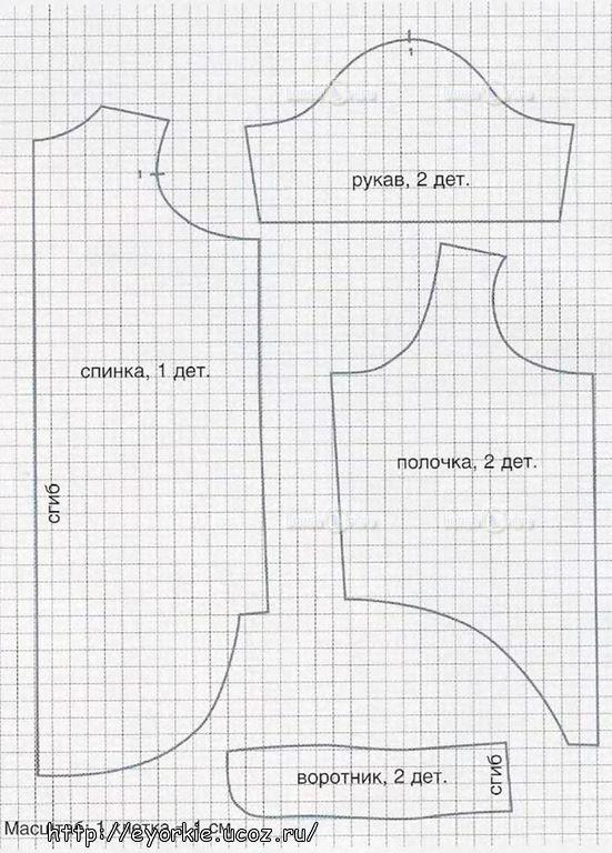Выкройка одежды для спаниелей