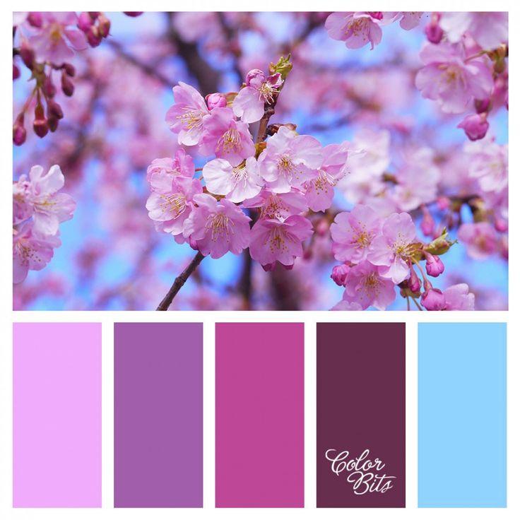Paletas Colorbits #010