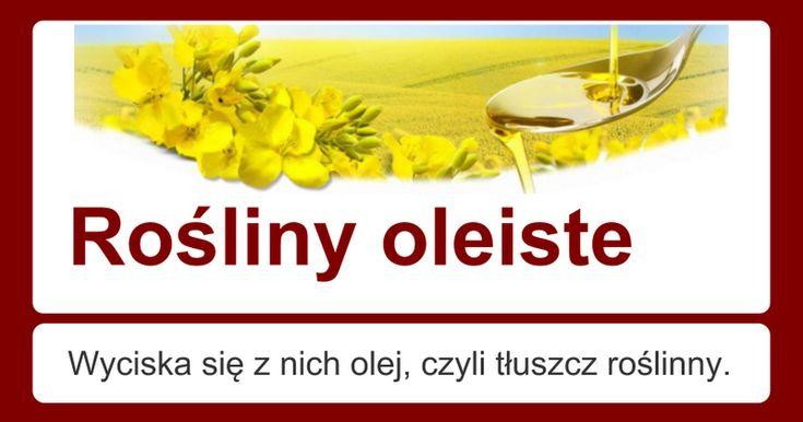 Rośliny oleiste Wyciska się z nich olej, czyli tłuszcz roślinny.