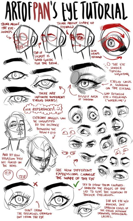 artofpan:  An anon asked me for an eye tutorial  I highly recommend looking reference photos on the internet to get used to drawing different eyes, and also to take photos of yourself to get used to drawing different angles/expressions – Don't just blindly draw the same eye over and over again, because without a strong basis of drawing by observation, you could get into some bad habits, and all your characters will look the same. :)