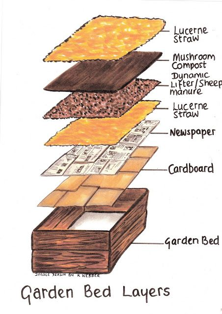 Raised Garden Bed Layers For Vegetables