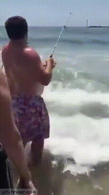 Shark Attack! | Gif Finder – Find and Share funny animated gifs