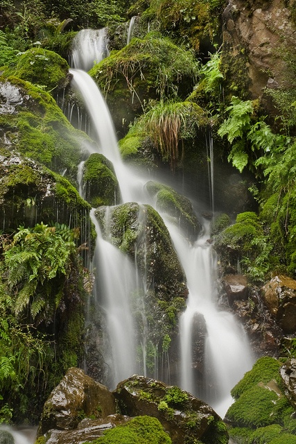 Cascading Marlborough Sounds by Chook with the looks, via Flickr