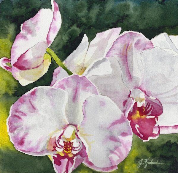 Thank You, Louise; original watercolor painting by Jennifer Kretschmer  http://www.jkretschmer.com/pages/30in30.html