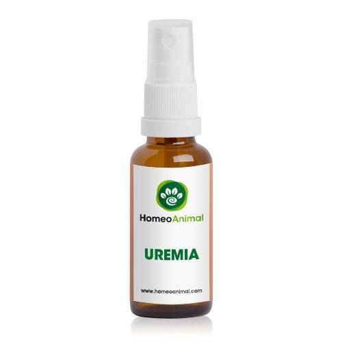 Uremia Homeopathic Remedy for cats, dogs and rabbits, purifies the blood and reduces the urea levels in the blood.