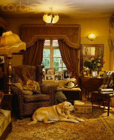 english country style bedrooms | Yellow Labrador in English Country Style Living Room - 42-15742624 ...