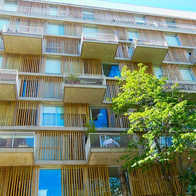 #Cerco de #Bambú para #Arquitectura #Edificio #ANCON @bambuguazu