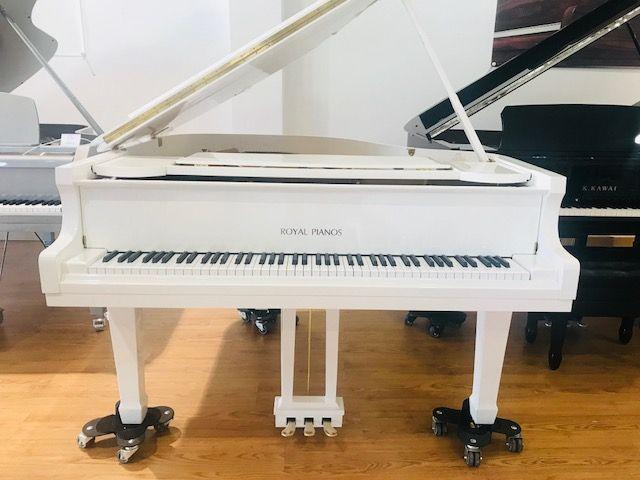 Royal Pianos Rp 150 Piano Cola Blanco Piano De Cola Piano Tocando Piano