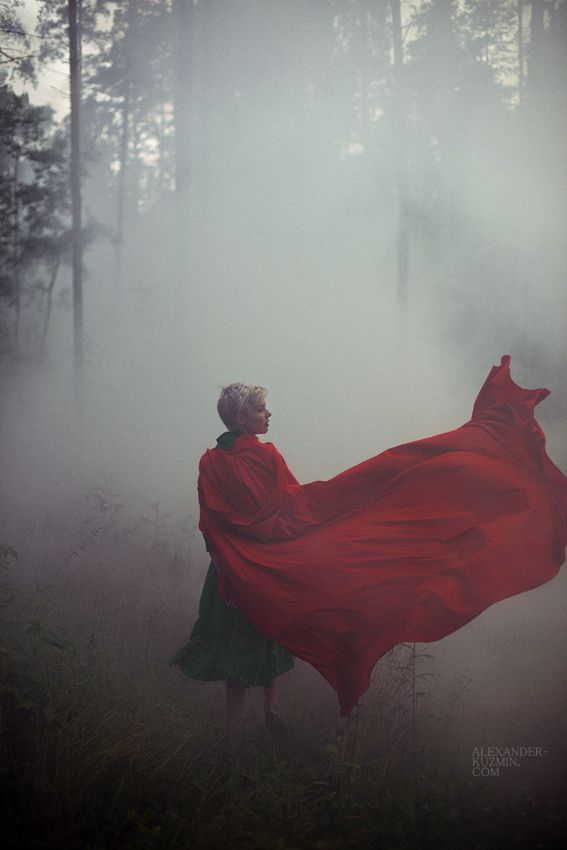 Into the Woods by Alexander Kuzmin (I liked this because it looks like a Wolf howling in the cape)