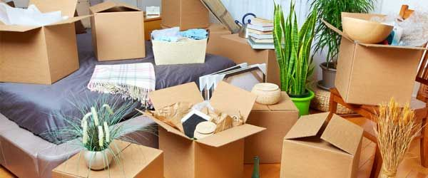 4 Ways to Embrace Cluttered Clients with Upselling