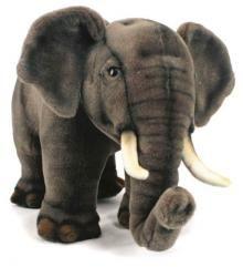 A wonderful Asian Elephant by Hansa.