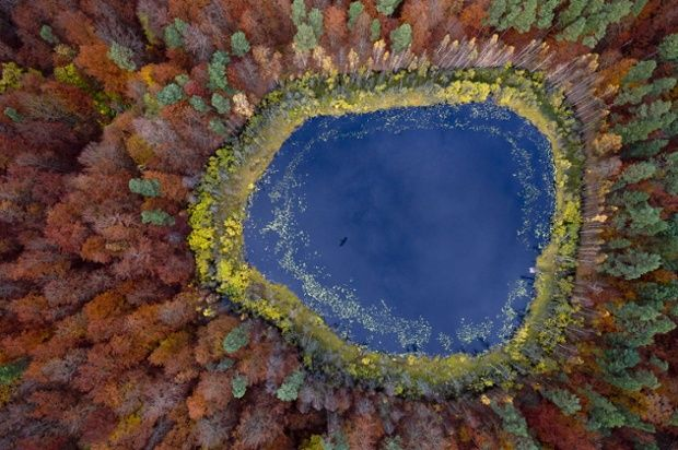 Kacper Kowalski new book Side Effects:  A view over a lake in a forest with trees changing colour in Autumn in Kashubia.