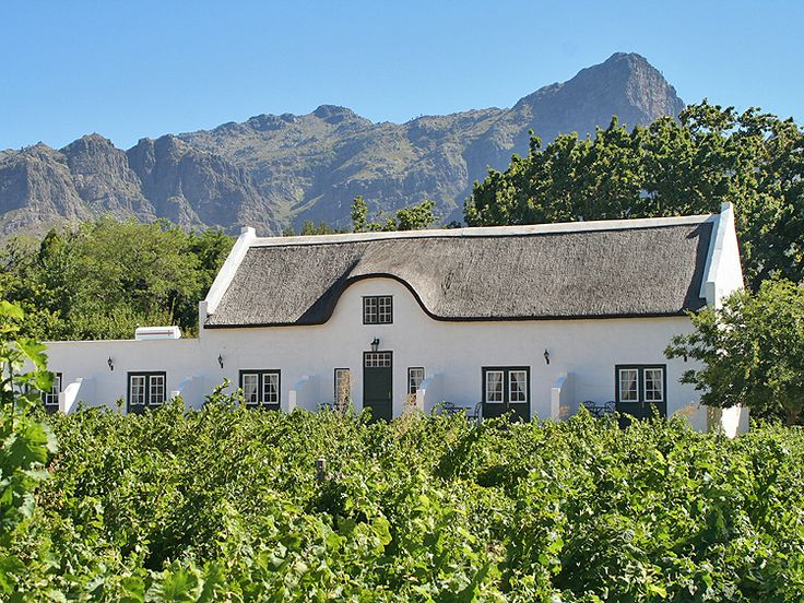 Dutch Cape-style vineyard in South Africa. (TrishBoy/Photos.com)