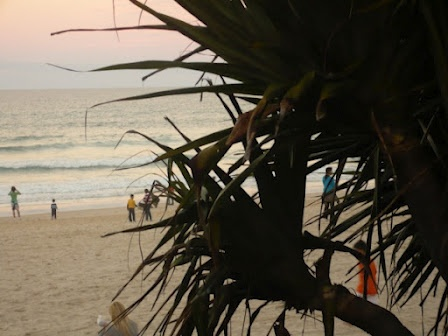 Gold Coast - Surfers Paradise Beach at dusk glimpsed through the trees