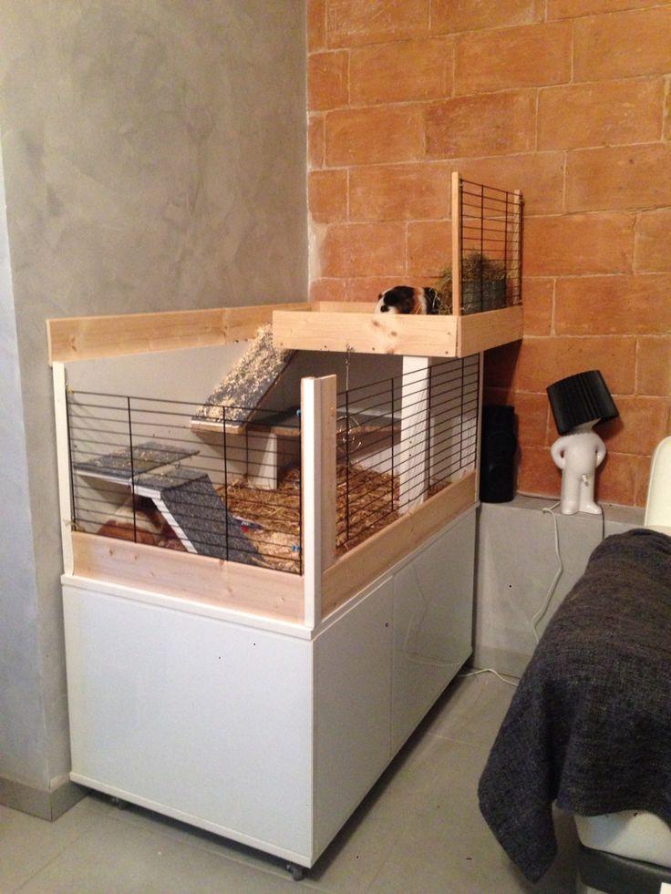 1000 id es sur le th me cages pour cochons d 39 inde sur pinterest cochon d 39 inde cochons et. Black Bedroom Furniture Sets. Home Design Ideas
