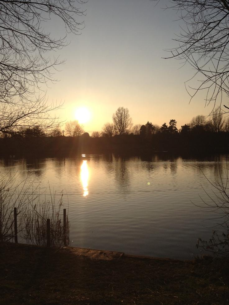 Needham Market lake, so pretty.