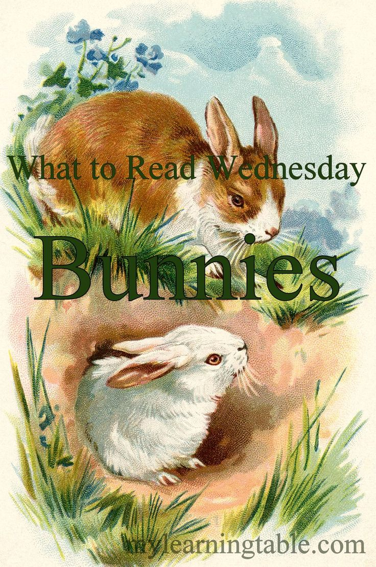 Watercolor books for kids - What To Read Wednesday Bunny Books For Kids