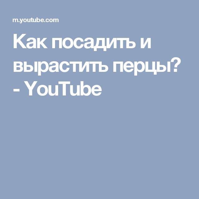 Как посадить и вырастить перцы? - YouTube