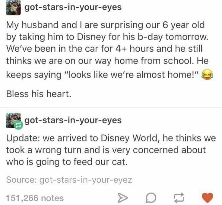 Awww. There's something utterly sweet about a little one more concerned about his kitty than being at Disneyland