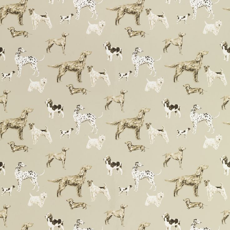 #LauraAshleySS14 Love this wallpaper for our hallway. A selection of pedigree dogs in lovely natural colours and it is washable! Fantastic! £27.30 in the sale too.