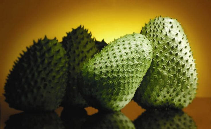 Another Cancer Killer? Guyabano (a.k.a. Soursop)?........................ Guybano is a fruit from the graviola tree, native to South America, EXTENSIVE reliable research exists that this plant stops cancer in it's tracks.