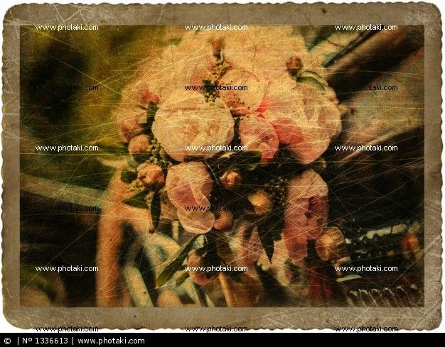 http://www.photaki.com/picture-vintage-card-with-bridal-bouquet-in-the-retro-car_1336613.htm