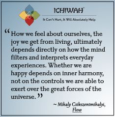 How we feel about ourselves, the joy we get from living, ultimately depends directly on how the mind filters and interprets everyday experiences. Whether we are happy depends on inner harmony, not on the controls we are able to exert over the great forces of the universe. – Mihaly Csikszentmihalyi, Flow