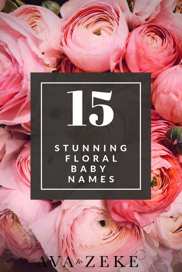 Best of floral baby names baby names floral baby