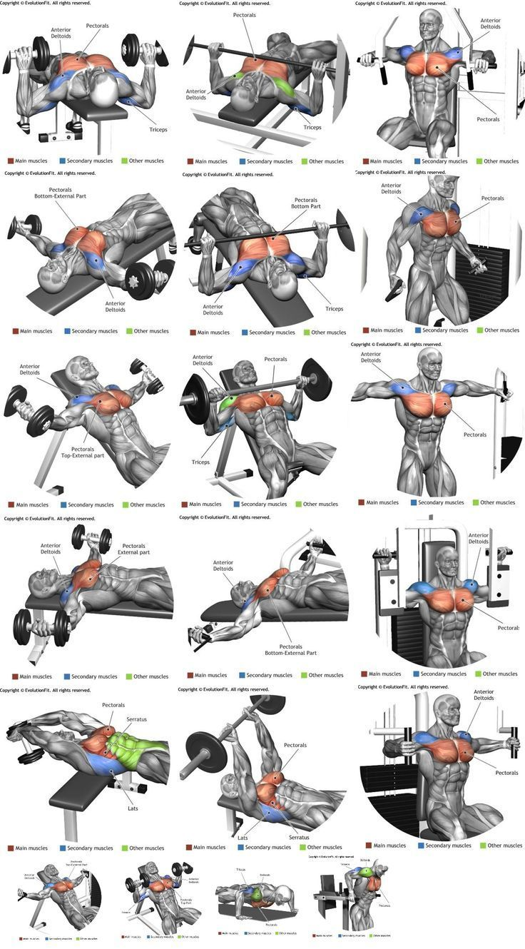 Heavy compound exercises are known as one of the main exercises for gaining muscle mass and they should be included in your chest training.