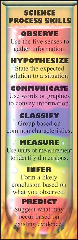 Cooperative Clusters Classroom Design Definition ~ Best science process skills ideas on pinterest