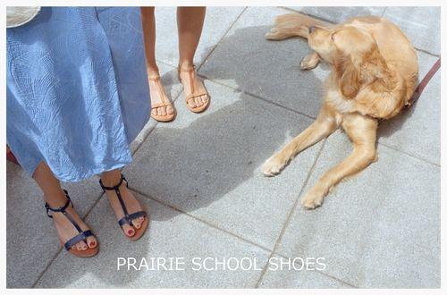 Prairie School Shoes